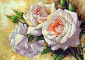 Broderie « roses blanches »