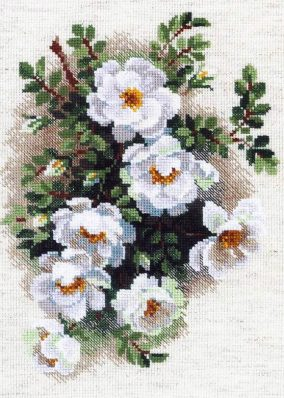 "Embroidery ""White rose,"""