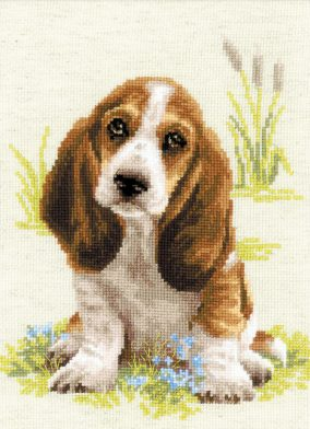 Stickerei «Baby Basset»