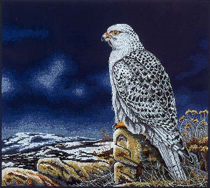 Вышивка Gyr Falcon (Anchor)