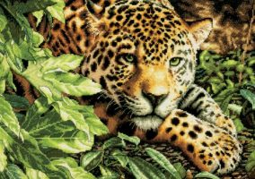 Leopard no Repose