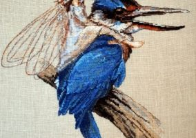 De Kingfisher
