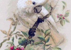 Embroidery white cockatoos»