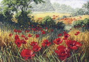 "Embroidery ""poppy field"""