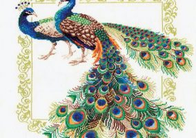 "Embroidery ""Peacock"""