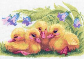 "Embroidery ""Funny ducklings"""